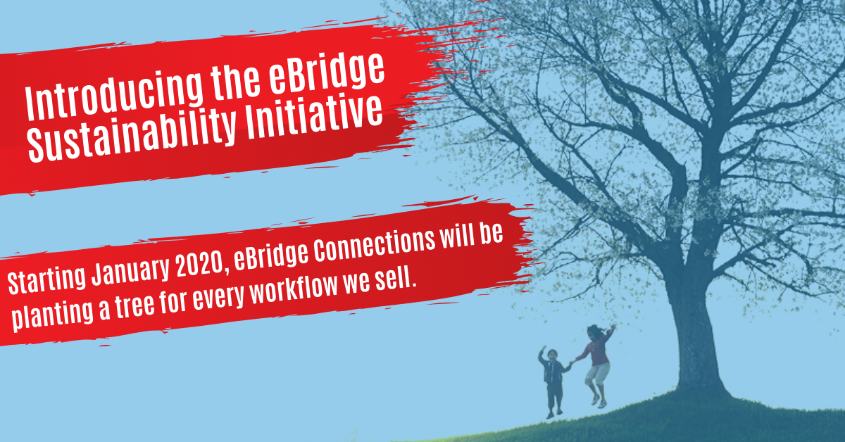 Announcing the eBridge Sustainability Initiative
