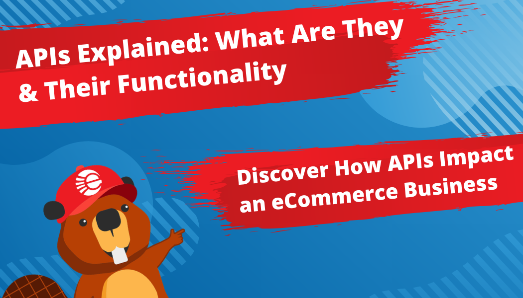 Exploring APIs, What Are They, & How They Impact eCommerce