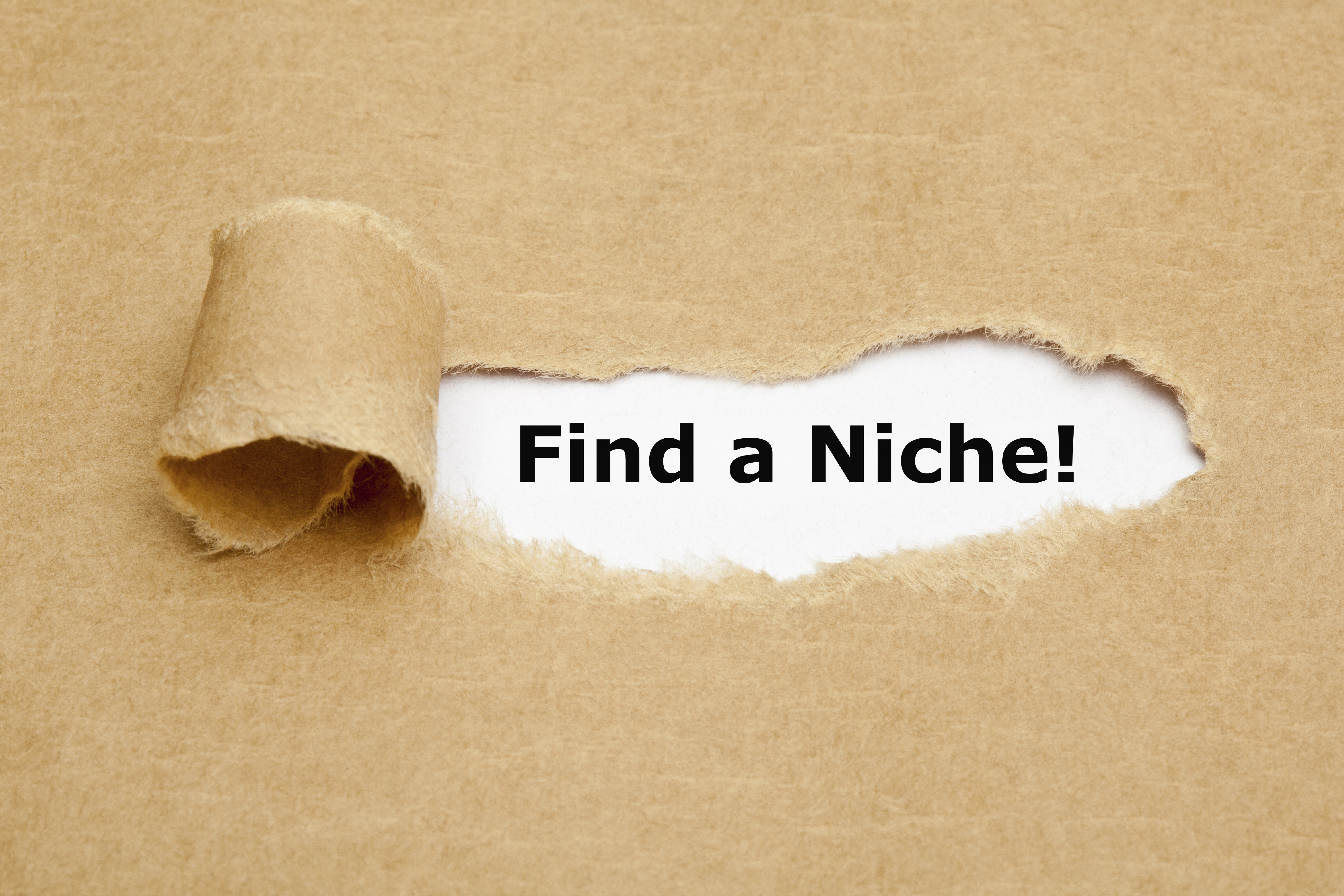 Finding Your Niche: Is There a Suitable Market for Your Product?