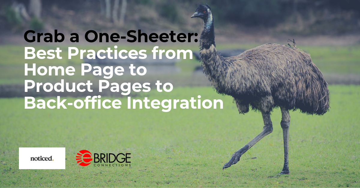 One-Sheeter: Best Practices for Home Page, Product Pages and ERP Integration