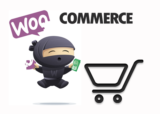 Real Questions From Real WooCommerce Merchants