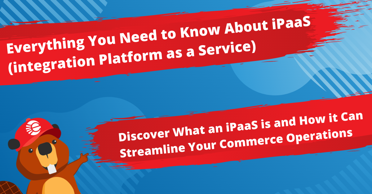 Everything You Need to Know About iPaaS - Definition, Functionality & Use Cases